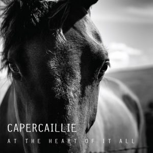 CAPERCAILLIE - At the heart of it all